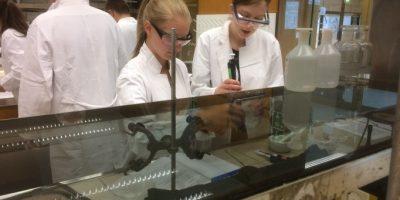 Biochemisches Schülerlabor